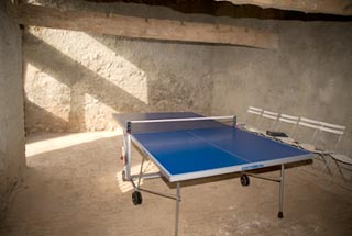 Table tennis barn